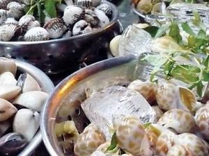 Hanoi Street Food Tour Photos