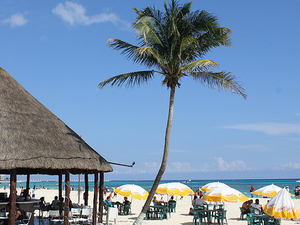 Sandos Caracol Eco Resort All Inclusive Timeshare Promotion Photos