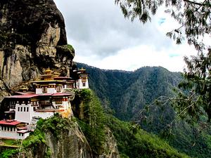 Thimphu Drubchen Tour with World Tour Plan Photos