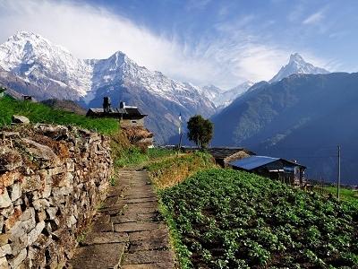 Annapurna Mountain From Village