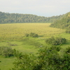 Arusha National Park Ngurdoto Crater