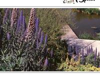 Barcelona Botanical Garden