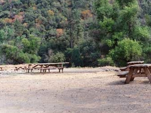 Bear Wallow Group Campground