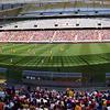 Inside The Cape Town Stadium