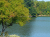 Centennial Lake