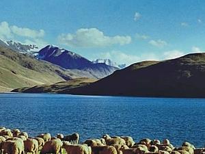 Chander Tal Lake