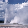 Clepsydra Geyser - Yellowstone - USA
