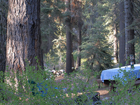 Cold Spring Campground