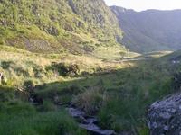 Craig Cerrig-gleisiad and Fan Frynych National Nature Reserve