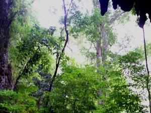 Cueva de la Quebrada del Toro
