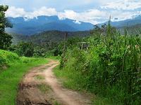 Doi Suthep-Pui National Park
