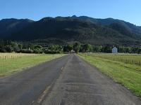 Pine Valley