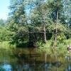Drweca River