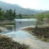 Scenic Ranakpur Countryside
