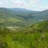 Ecuador Sanguay National Park