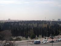 Edirnekapı Martyr's Cemetery