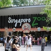 Entrance To Singapore Zoo