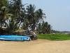 Fishing Boats At Negombo