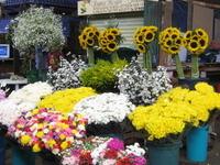 Mercado Jamaica