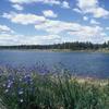 Fools Hollow Lake