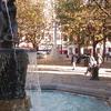 Fountain In Sloane Square