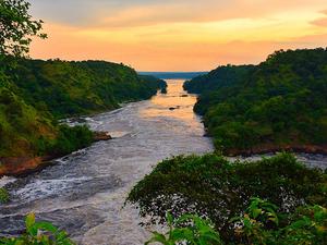 Friends Nature Safaris 5 Days And 4 Nights Uganda Big Five Safaris(FNS 01) Photos