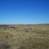 Gibson Desert