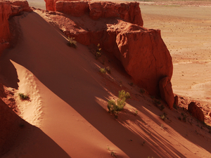 Gobi Desert Tour @ 8% Off !!! Photos