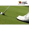 Golf La Rosaleda Par 3