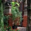 Golden Temple Kunming Gate