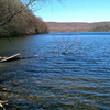 Housatonic State Forest