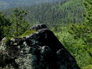 Hammastunturi Wilderness Area