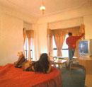 Hotel Lions