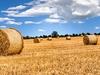Irish Countryside Straw Bales