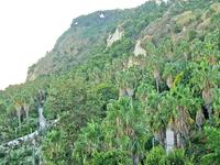 Jardines Costa i Llobera