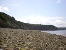 Joggins Fossil Cliffs Canada