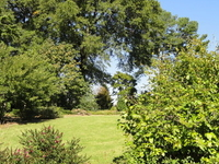 J. C. Raulston Arboretum