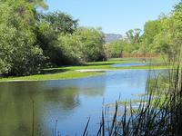 Kelsey Creek
