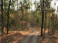 Ken Ghariyal Wildlife Sanctuary