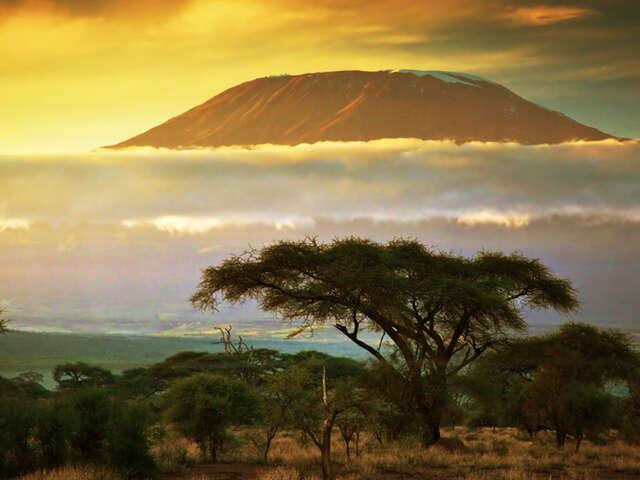 Kilimanjaro Climbing Tours-Marangu