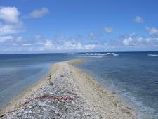Kingman Reef Oct 2 0 0 3