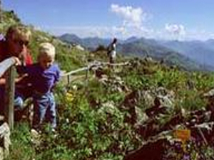 Kitzbühel Alpine Flower Garden