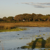 Katavi National Park At Sunset