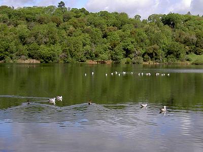 Lake Ralphine
