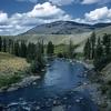 Lamar Valley - Yellowstone - USA