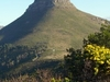 Lion's Head Viewed From Signal Hill