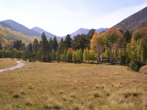 Lockett Meadow Campground