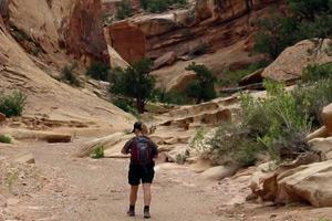 Lower Muley Twist Canyon Hike