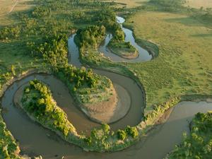 Kenya and Tanzania Safari Experienced Tour Photos