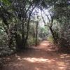 Monkey Point Trail - Matheran - Maharashtra - India